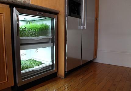 Kitchen-Example-003